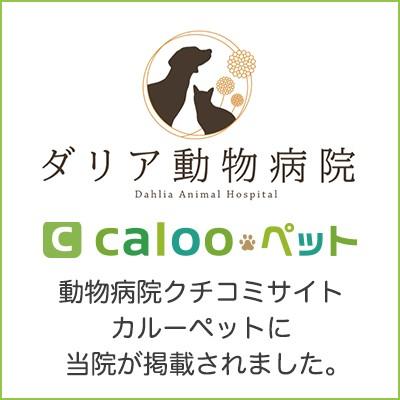 動物病院の口コミサイトにダリア動物病院が掲載されました。
