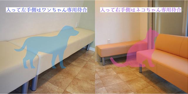 ダリア動物病院の待合室